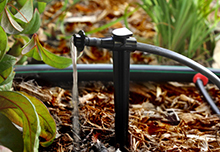 Drip-Irrigation-Cropped